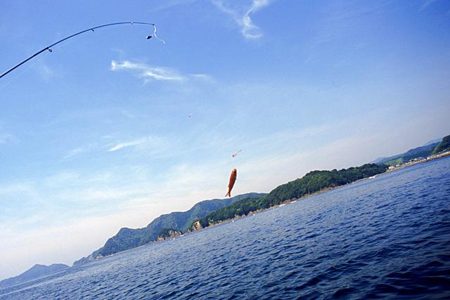 魚釣りに行きたいなっ♪